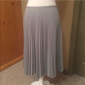 Gorgeous Pleated Skirt